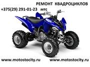 ремонт скутеров мопедов квадроциклов